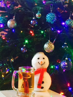 Christmas Cider Punch