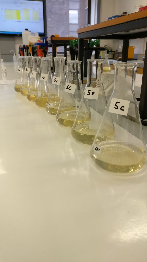 Beakers containing extract samples to test the modification levels of barley