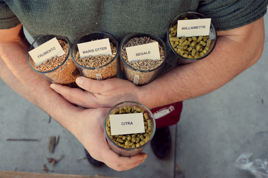 hops used in Birrificio Indipendente Elav's No War IPA, courtesy BIE