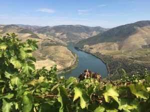 photo via Wines of Portugal