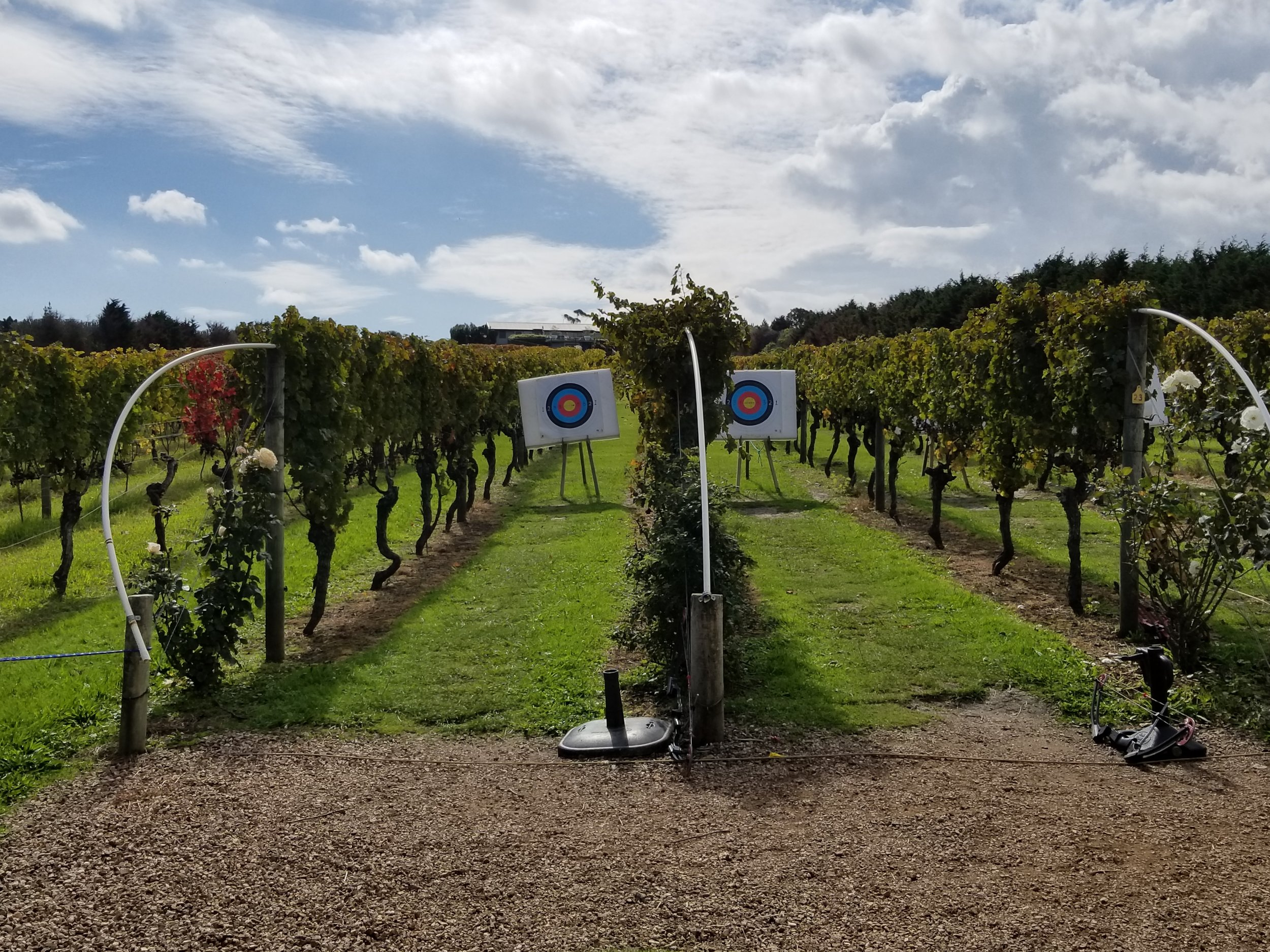 archery in the vineyards at Wild on Waiheke
