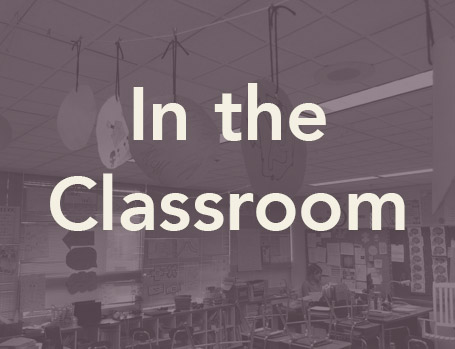 Supporting Systems In the Classroom