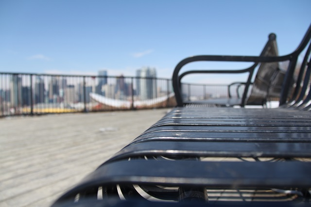 Bench with City in Background - resized.jpg