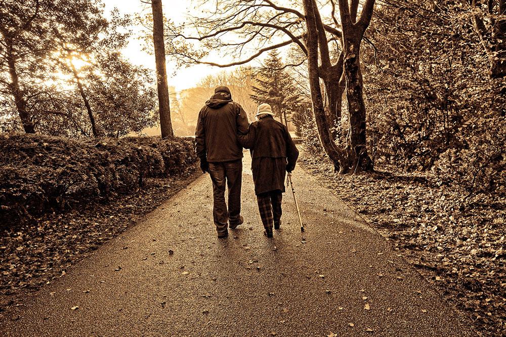 elderly-assistance-progtram.jpg