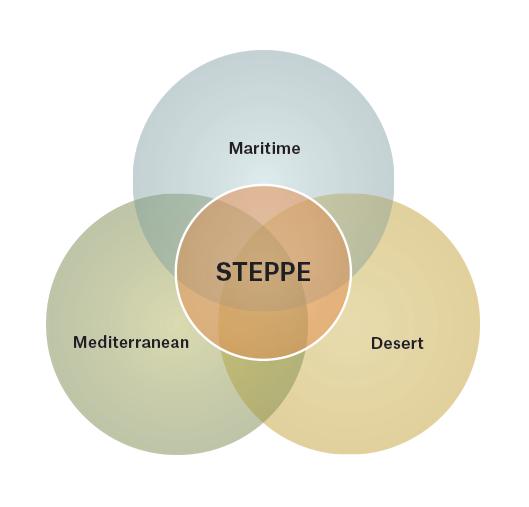 Steppes_Venn_v2.png