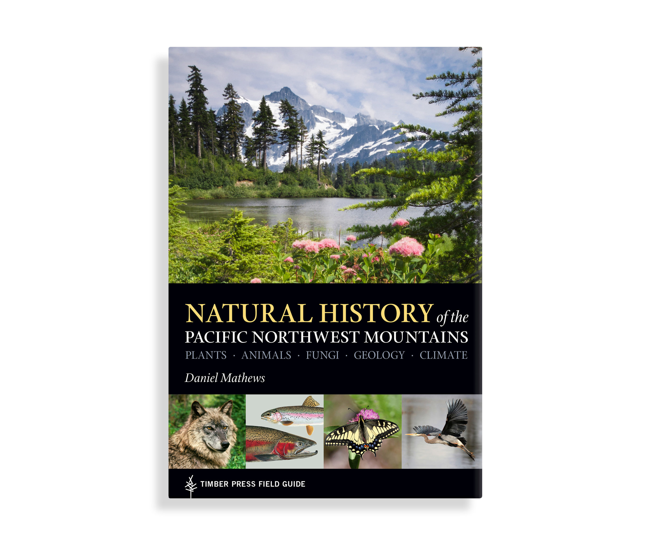 book_fieldguidenaturalhistory_cover_001.jpg