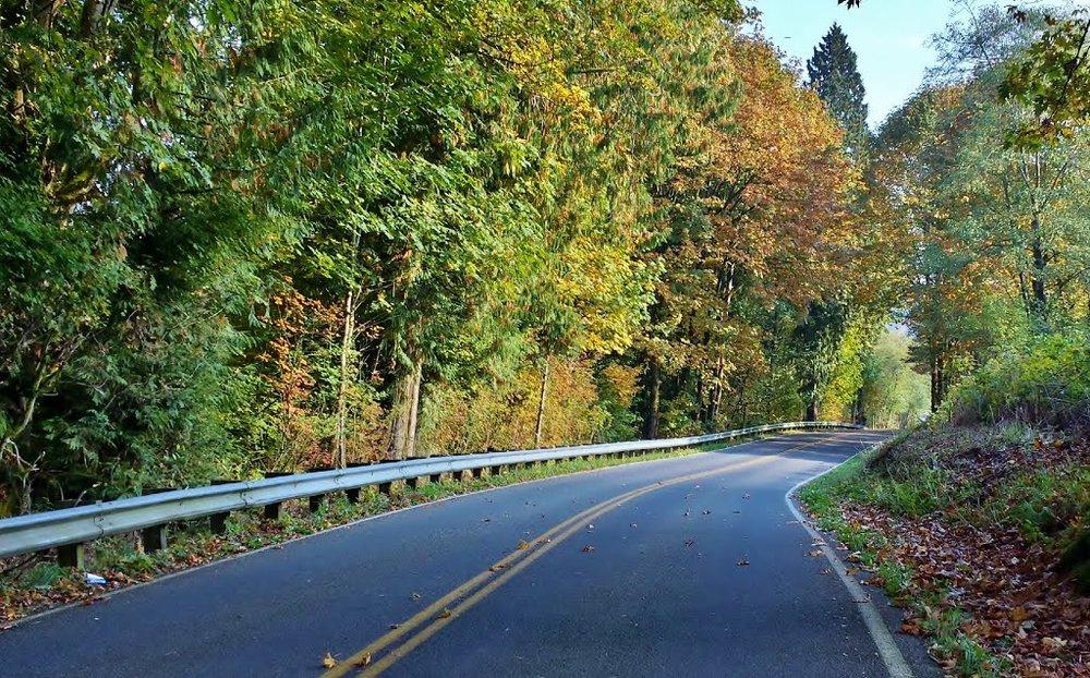 Highbridge Road in the Fall