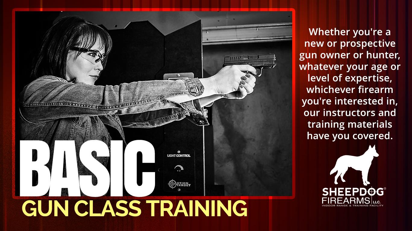 Basic Hand Gun New.jpg