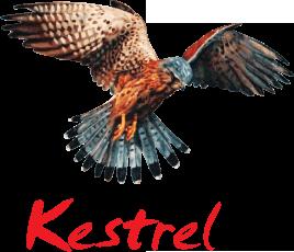 kestrel-portal-logo.png
