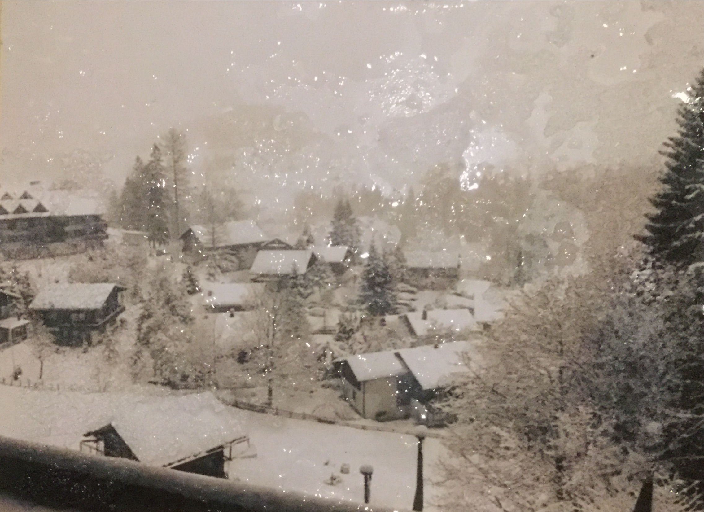 A view of Hulsenbeck.