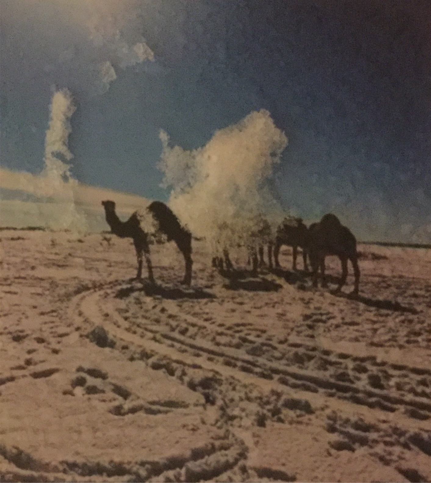 Camels wait in the snow outside the pub.