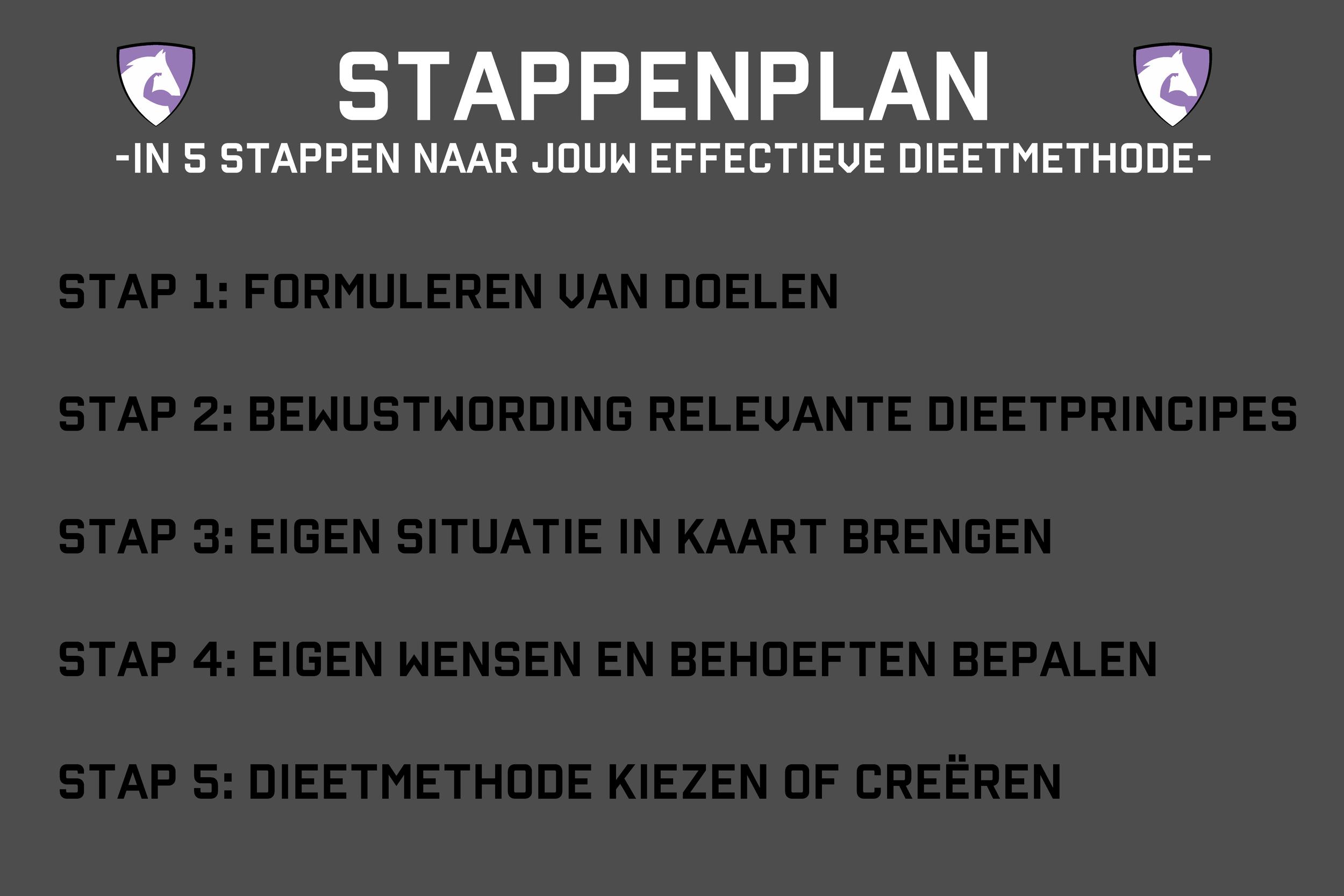 Stappenplan-effectieve-dieetmethode.png