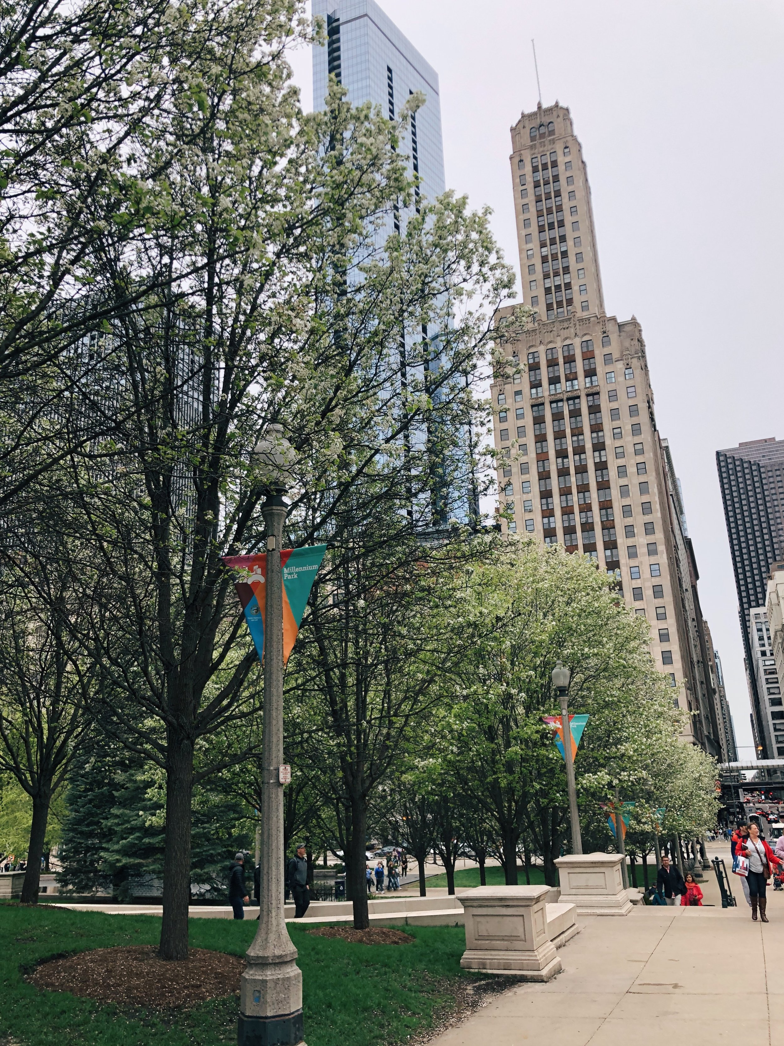 Chicago Mother's Day Trip
