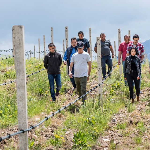 Students from Armenia's EVN Wine Academy toured our vineyards with Paul and the Yacoubians for a deep dive in vineyard management of the young vines. These talented individuals will achieve a masters level certificate in viticulture and winemaking after they complete the program and their thirst for knowledge is admirable - the future of Armenian wine! #armenianwine #vineyardwalk #payitforward #knowledgeispower