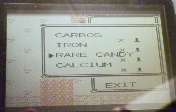 2. Set your 6th item to Rare Candy.