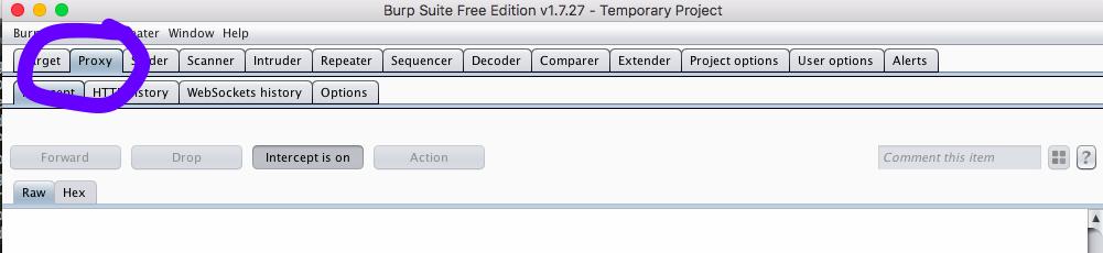 Click  Proxy  > Options .