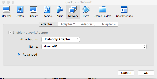 If you want multiple VMs to talk with one another, you can simply put them on the same Host-only Adapter network. This is usually preferable as to isolate VMs from the actual internet.