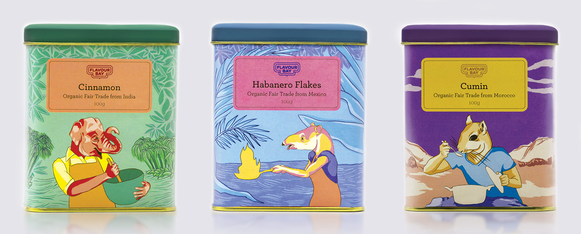 Flavour-Bay-Spice-Packaging-Cinammon-Illustration-and-Design-Front-Mockup-by-Fiona-Dunnett.jpg