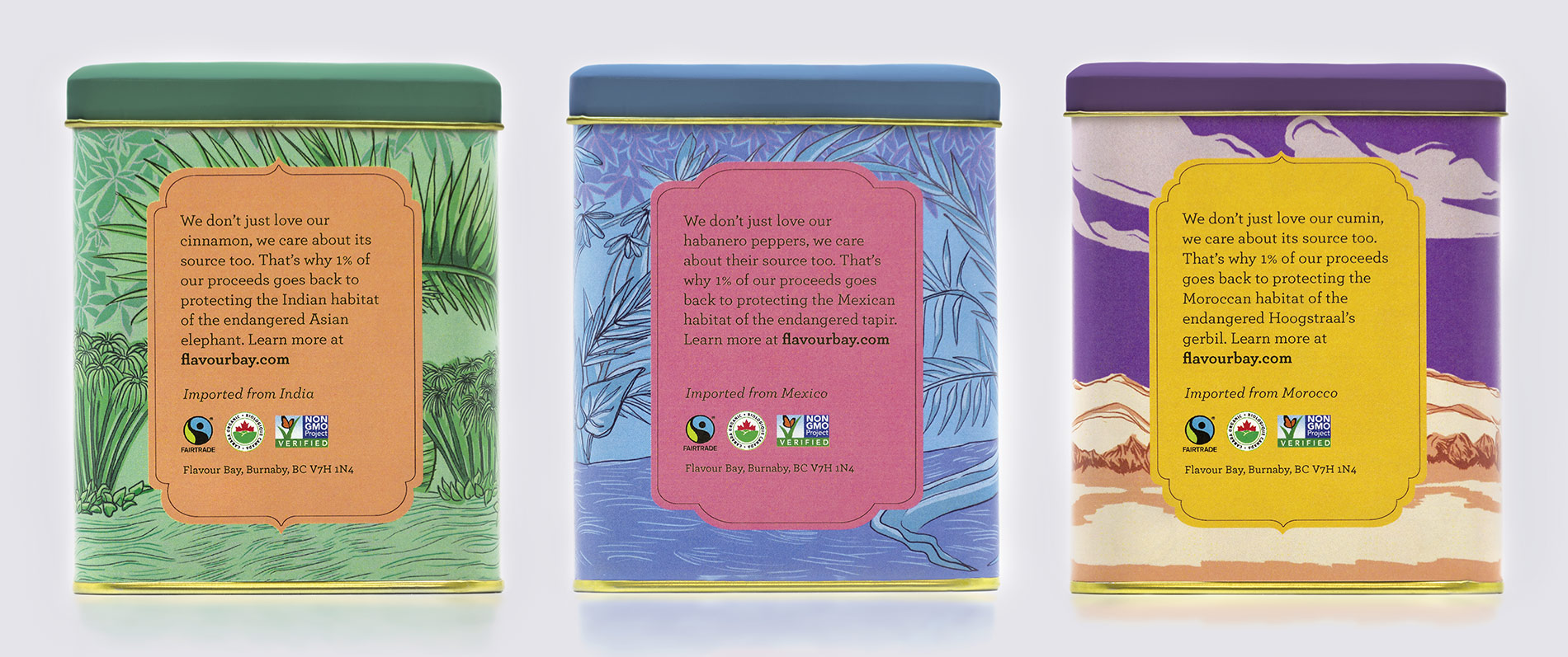 Flavour-Bay-Spice-Packaging-Cinammon-Illustration-and-Design-Back-Mockup-by-Fiona-Dunnett.jpg