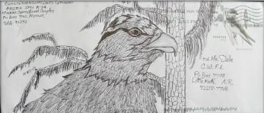Eagle in Pine.jpg