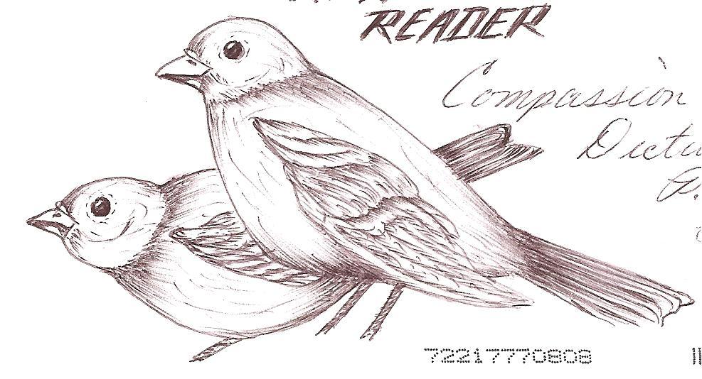 Eddie Arnold's birds 001.jpg