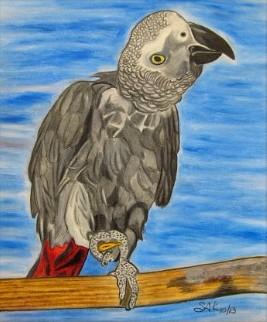 Gray Parrot.jpg