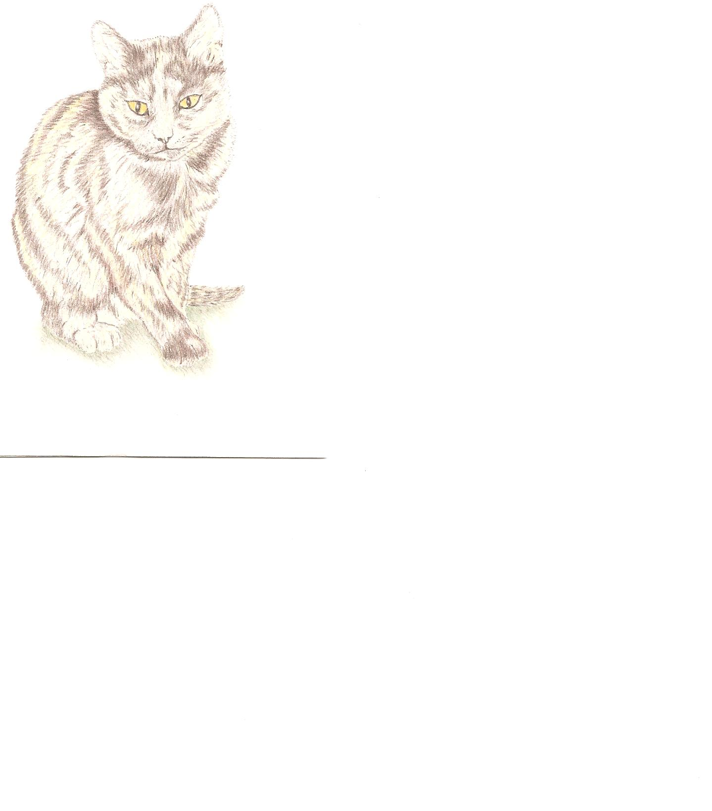 Karl's kitty.jpg