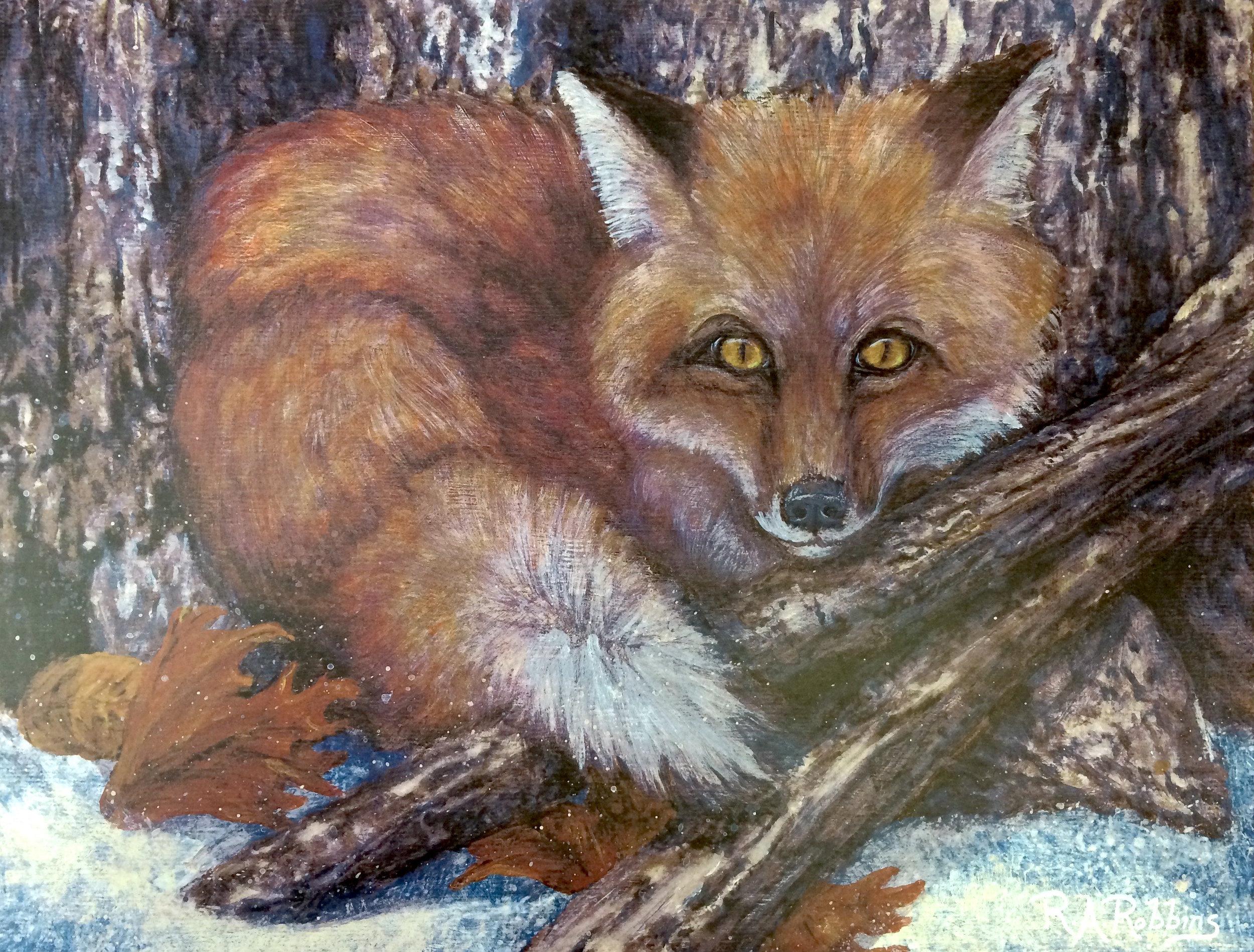 RARobins.Fox.jpg