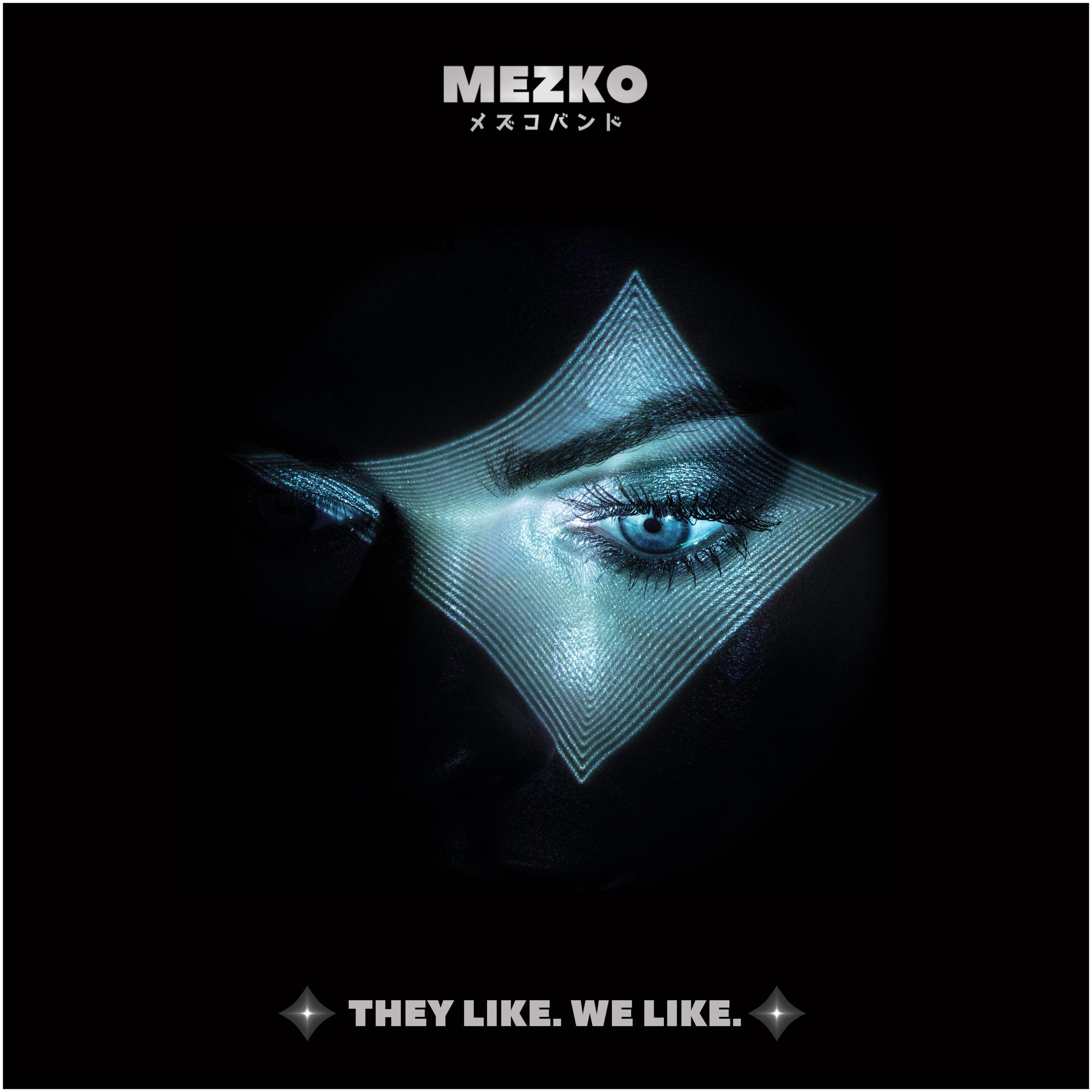 MEZKO - THEY LIKE WE LIKE COVER.jpg