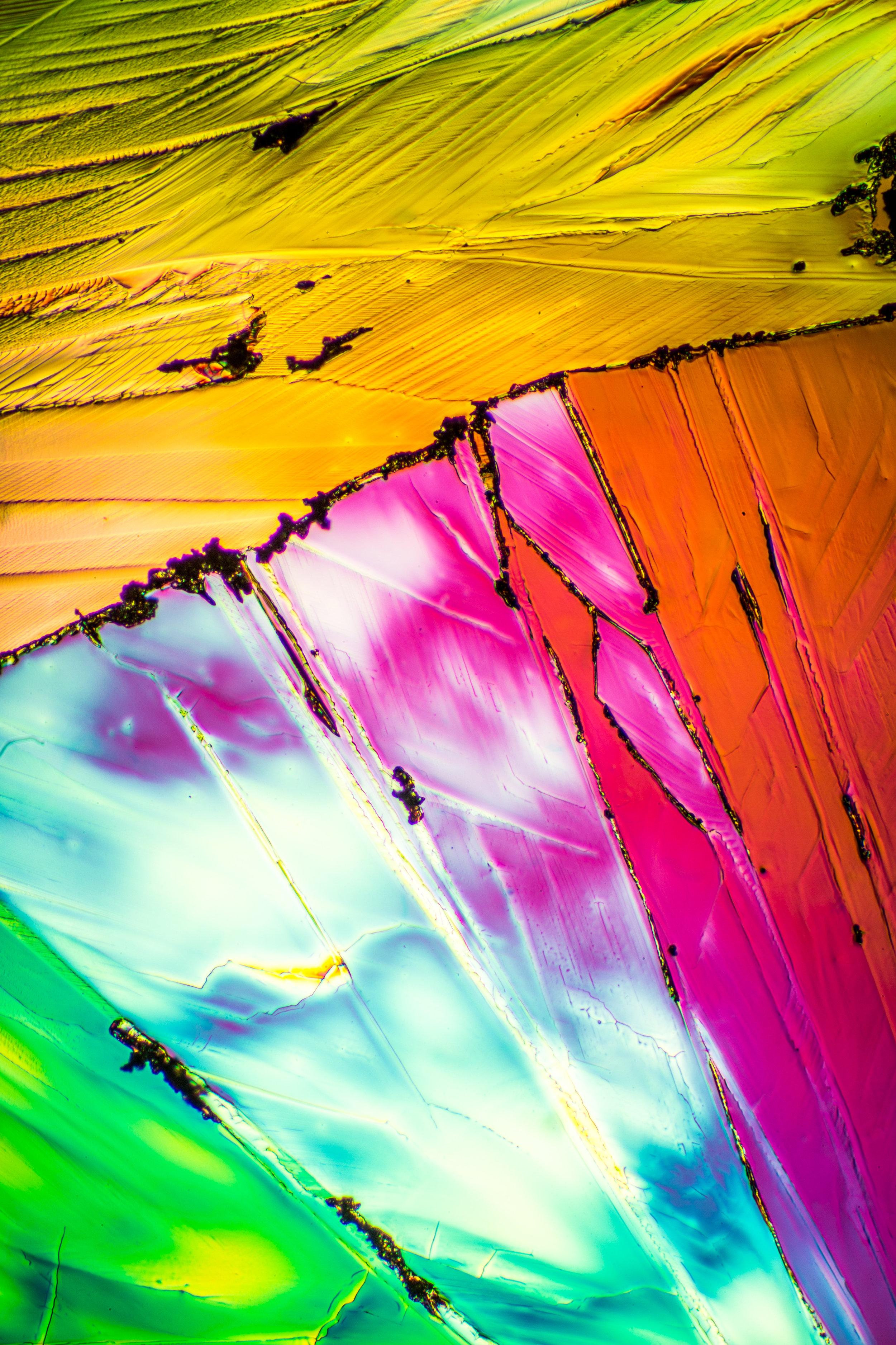 Microscopy_13.jpg