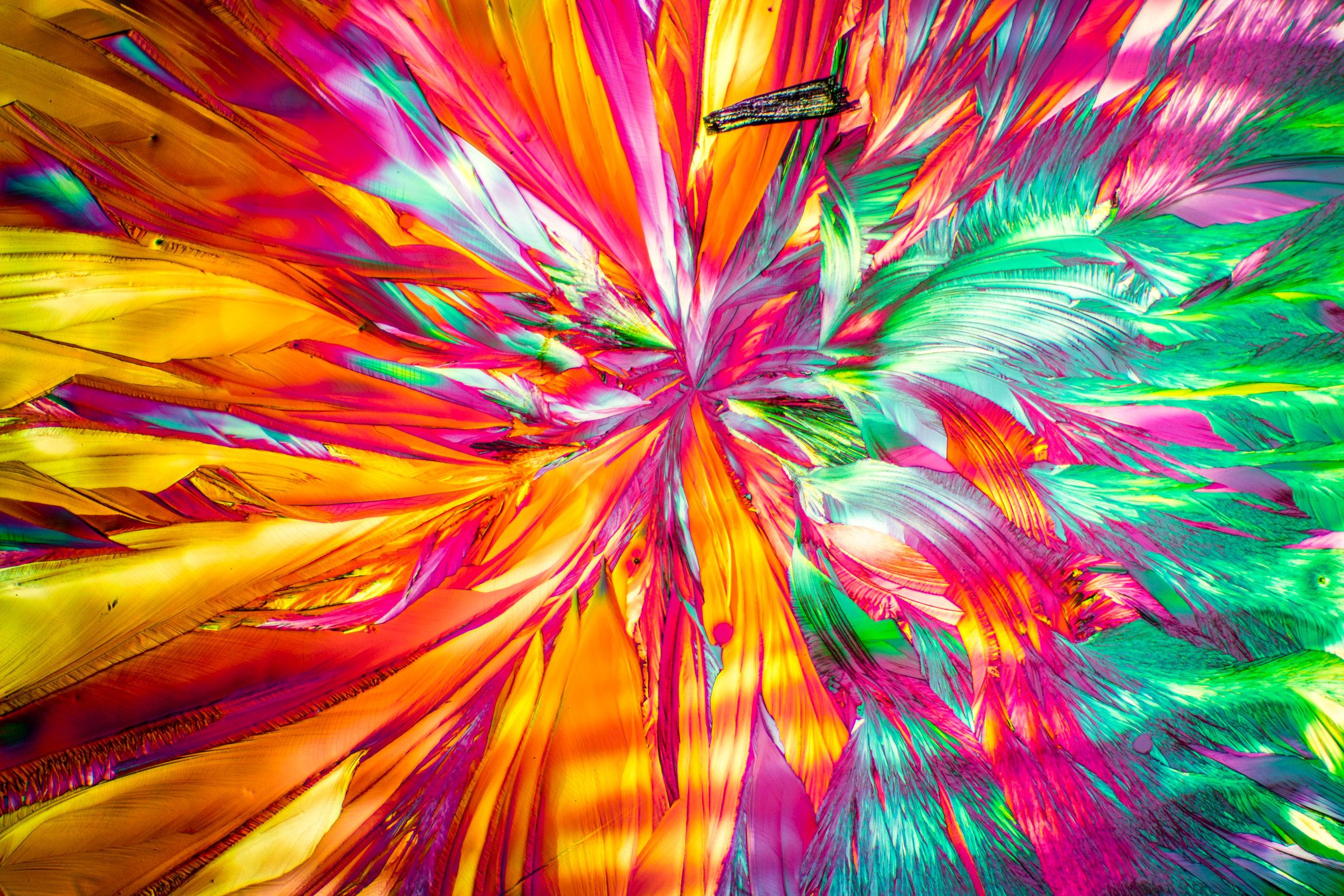 Microscopy_15.jpg