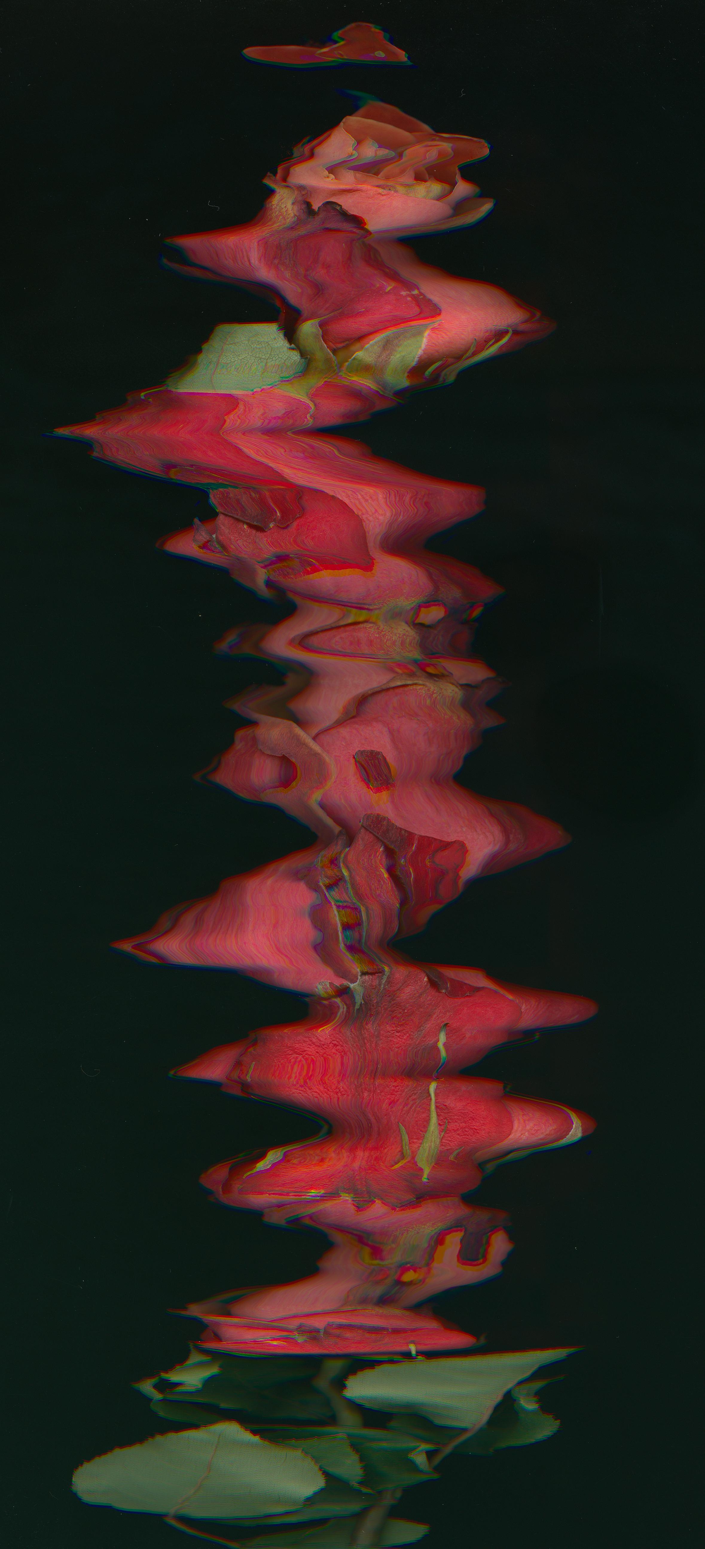 Flowers (4)-2.jpg