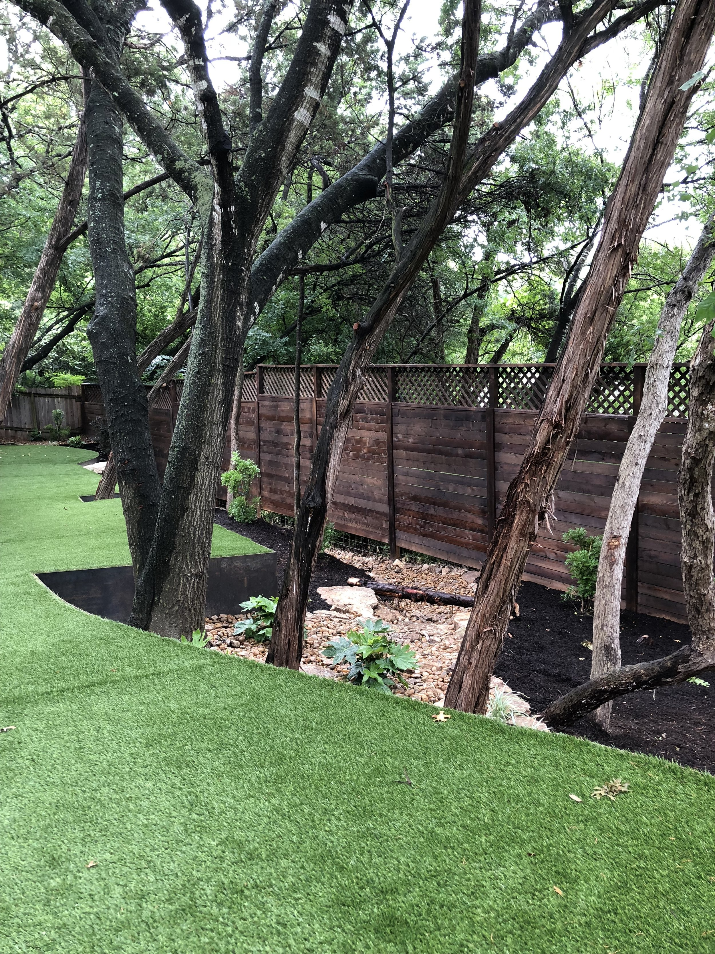backyard-trees-cedar-terrace-artificial-turf-design-landscape-natural-austin
