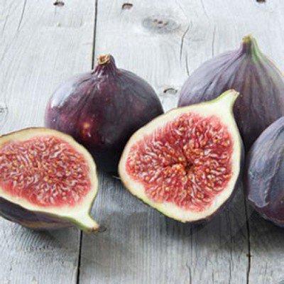 figs 2.jpg