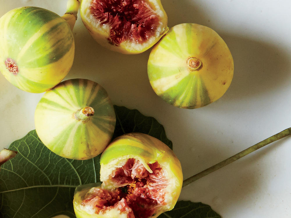 figs 11.jpg