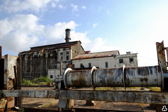 puerto-rico-guide-ape-is-dapper-last-sugar-plant-21.jpg
