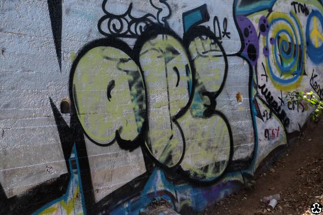 ape-is-dapper-los-angeles-nazi-yards-graffiti-12.jpg