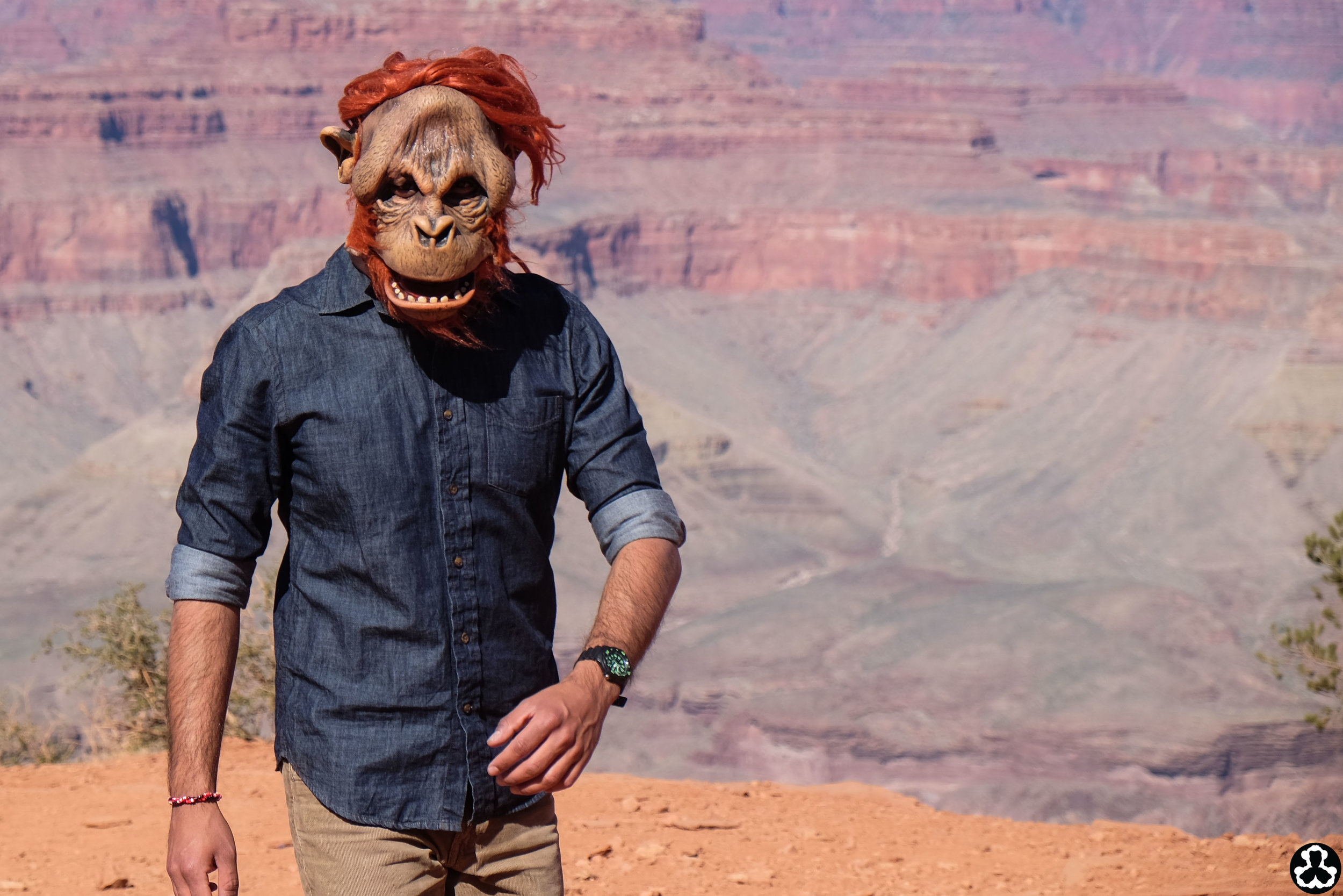 camping-the-grand-canyon-ape-is-dapper-9