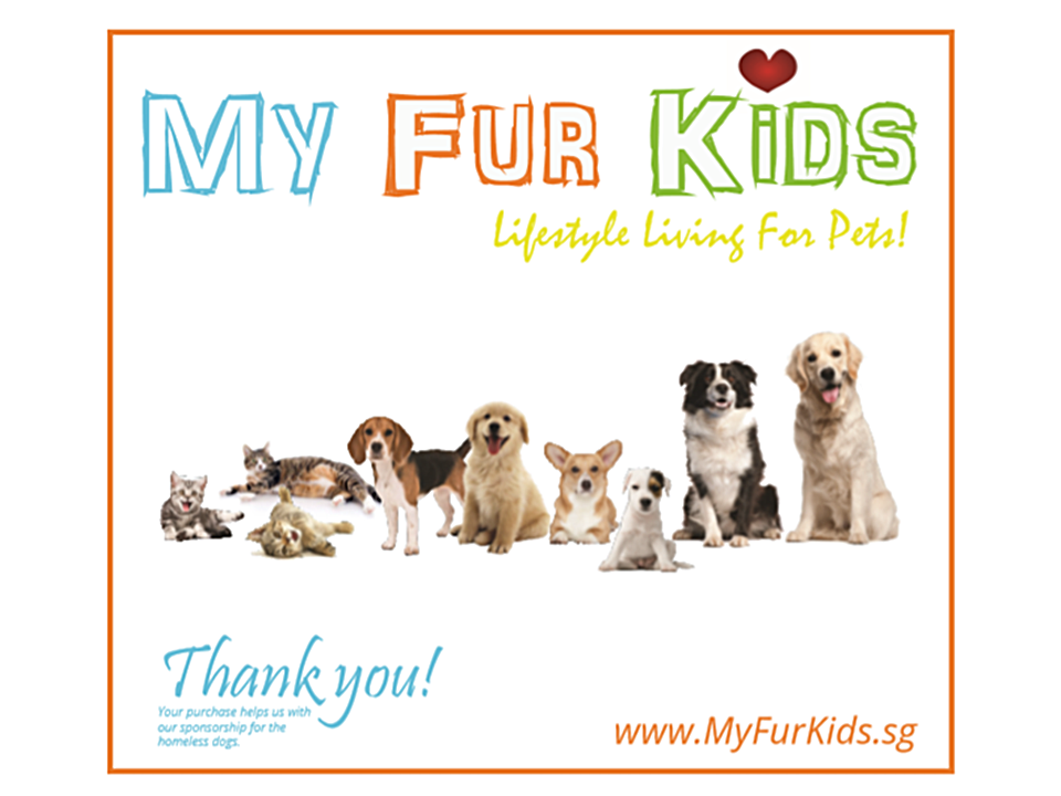 MyFurKids.sg is an online store promoting lifestyle living for dogs and cats. It offers a variety of products for the well-being of fur kids at discounted retail prices. It carries popular dog food and cat food such as Hill's Science Diet , Nature's Gift , Nutripe , Really Pet Food , Taste of the Wild, Country Value, Bronco , Diamond Care , Aatas Cat & brands available in Singapore. Freshness guaranteed with its warehouse logistics. MyFurKids.sg uses its earnings to sponsor homeless, sick and old dogs and cats. Find us on  www.myfurkids.sg