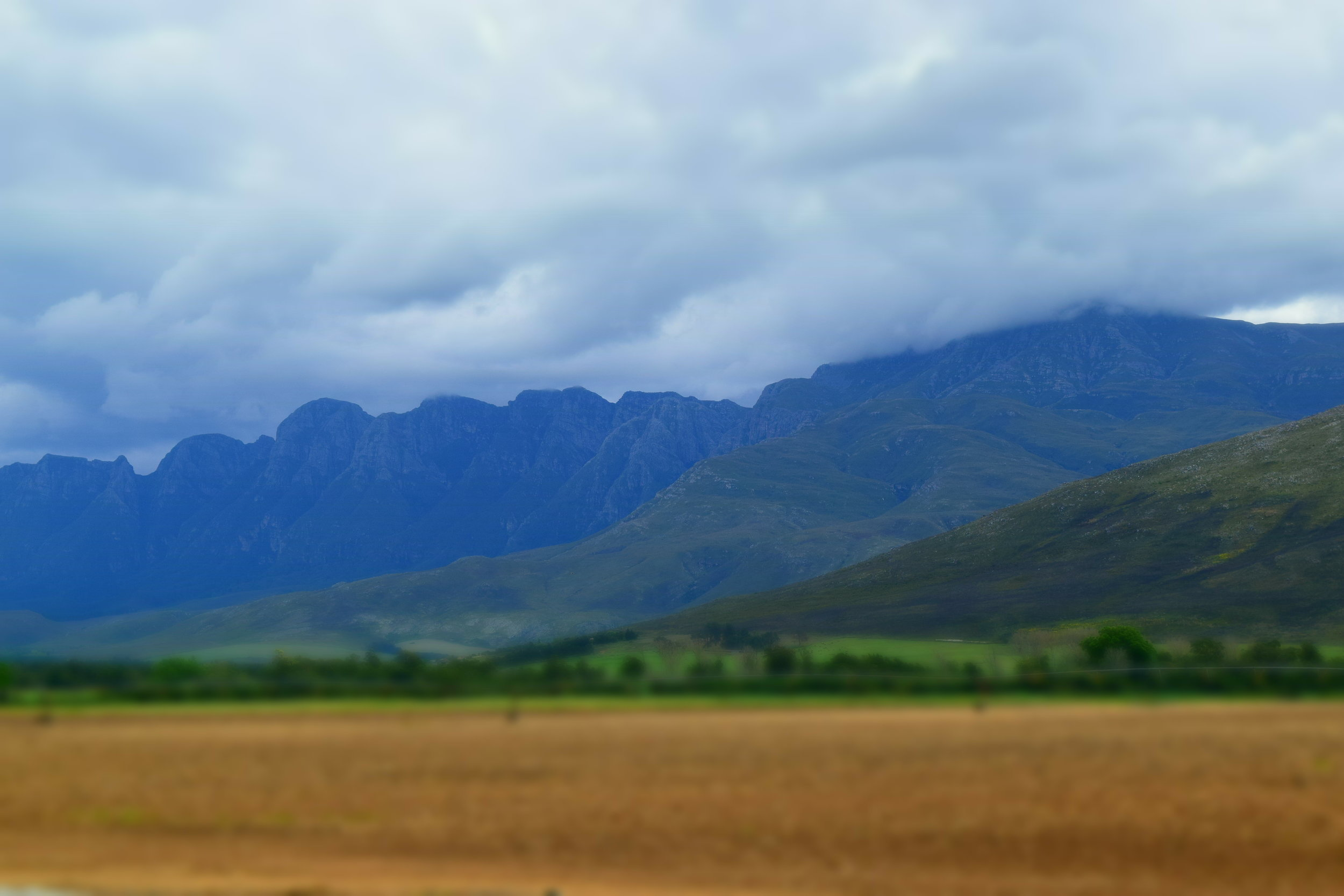 Copy of South African landscape