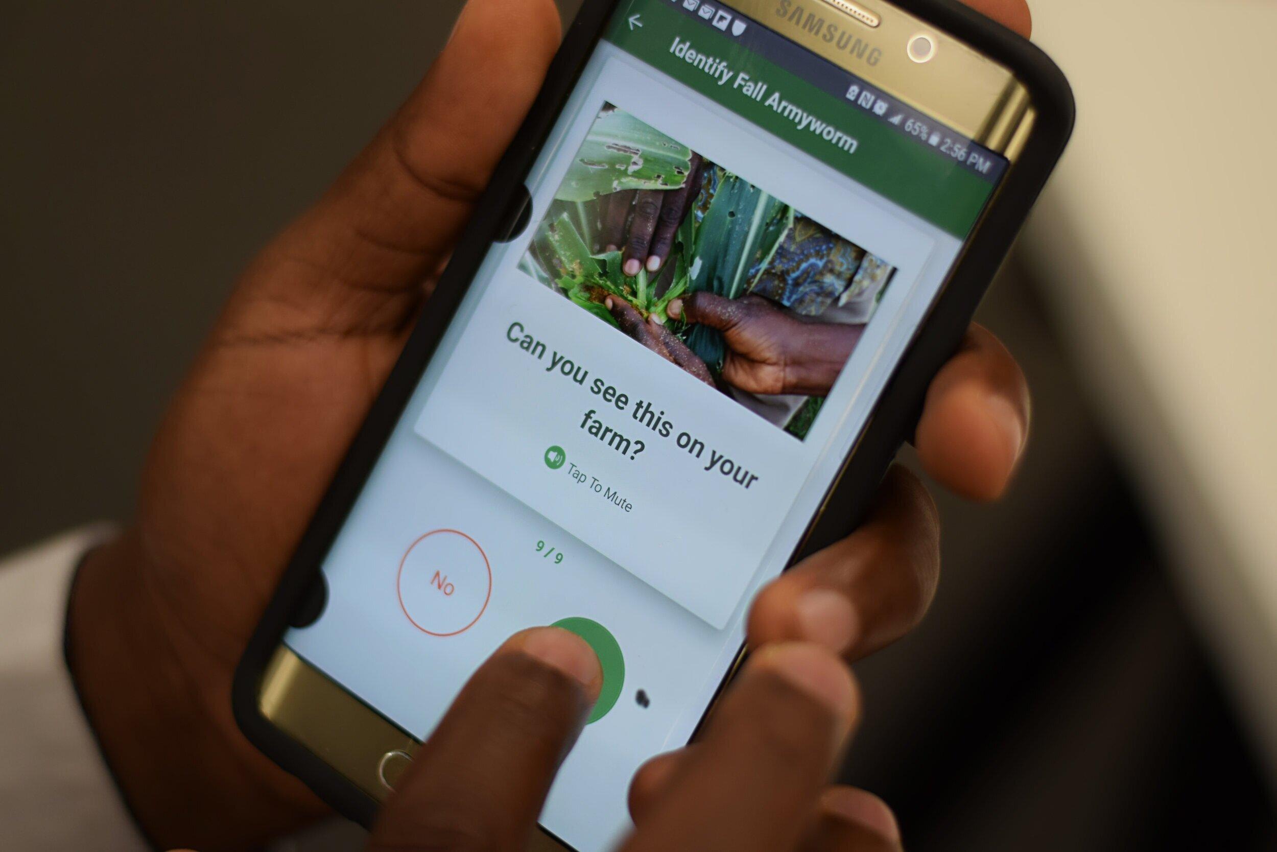 Our award-winning Cornbot app