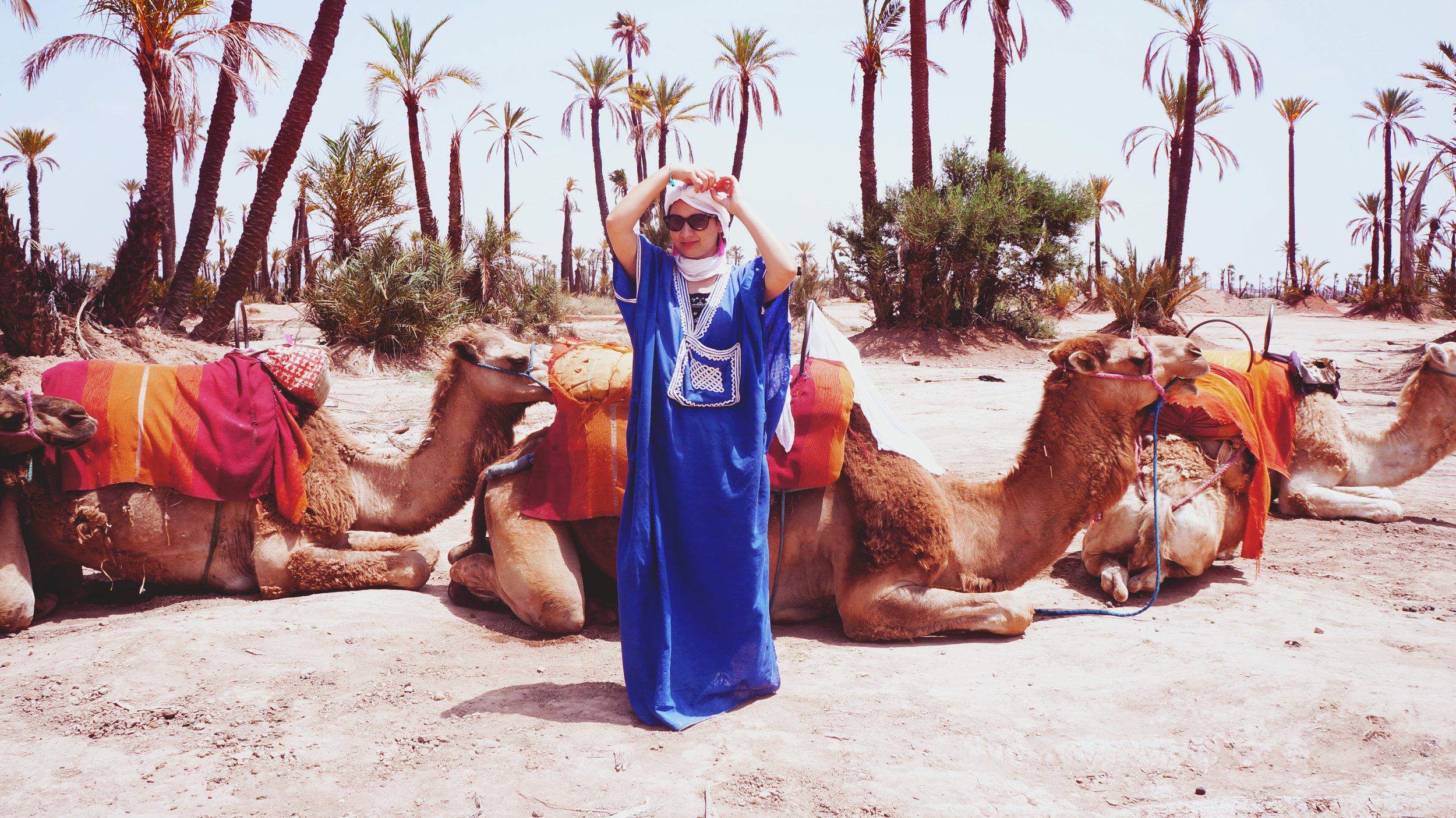 Camel ride excursion booked through Riad Kaiss