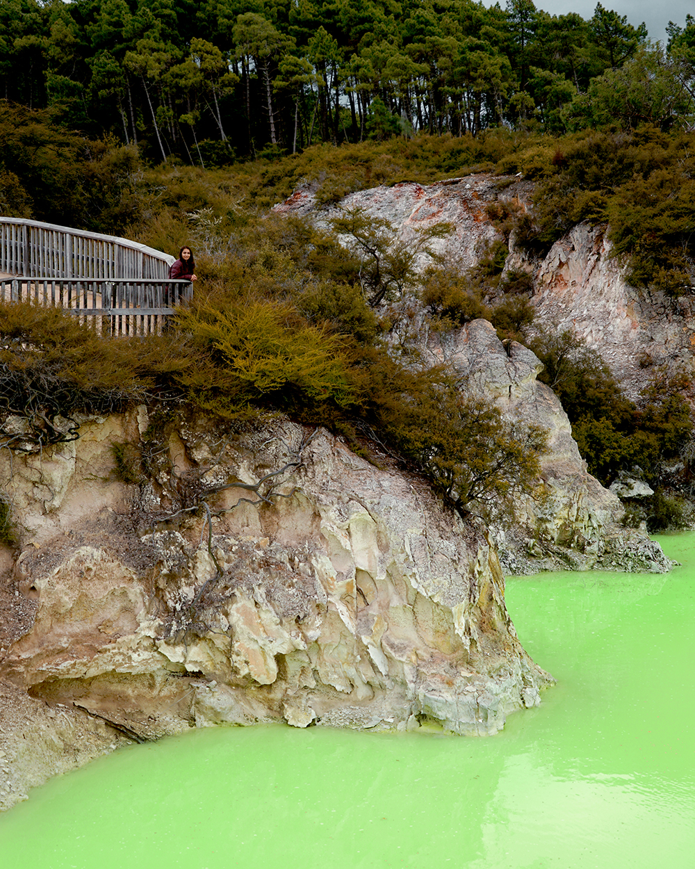 Wai-O-Tapu, Thermal Wonderland, Geothermal, Geothermal Activity, Thermal Pool