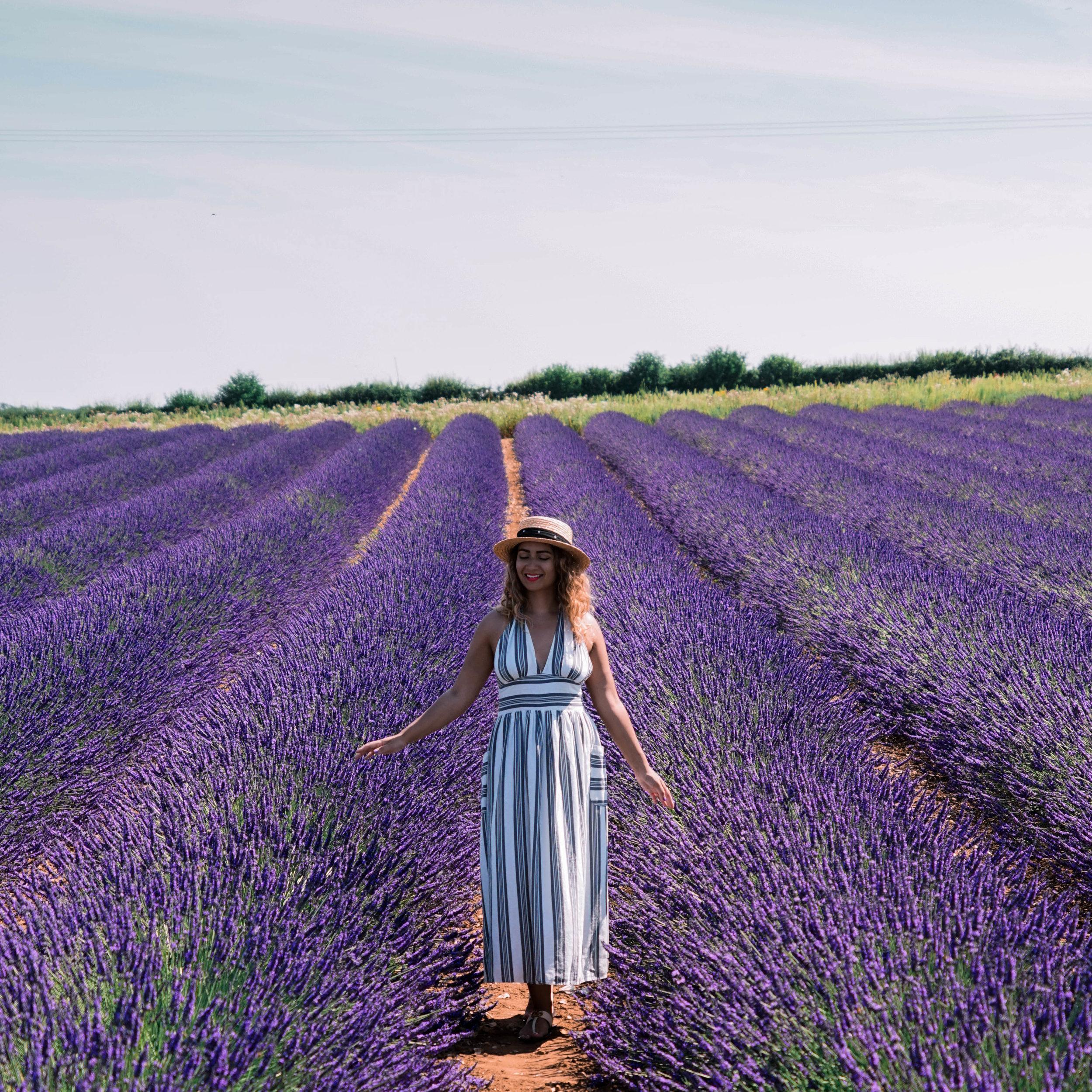 200124_PFH_Social_Instagram_Posts-Lavender-04.jpg