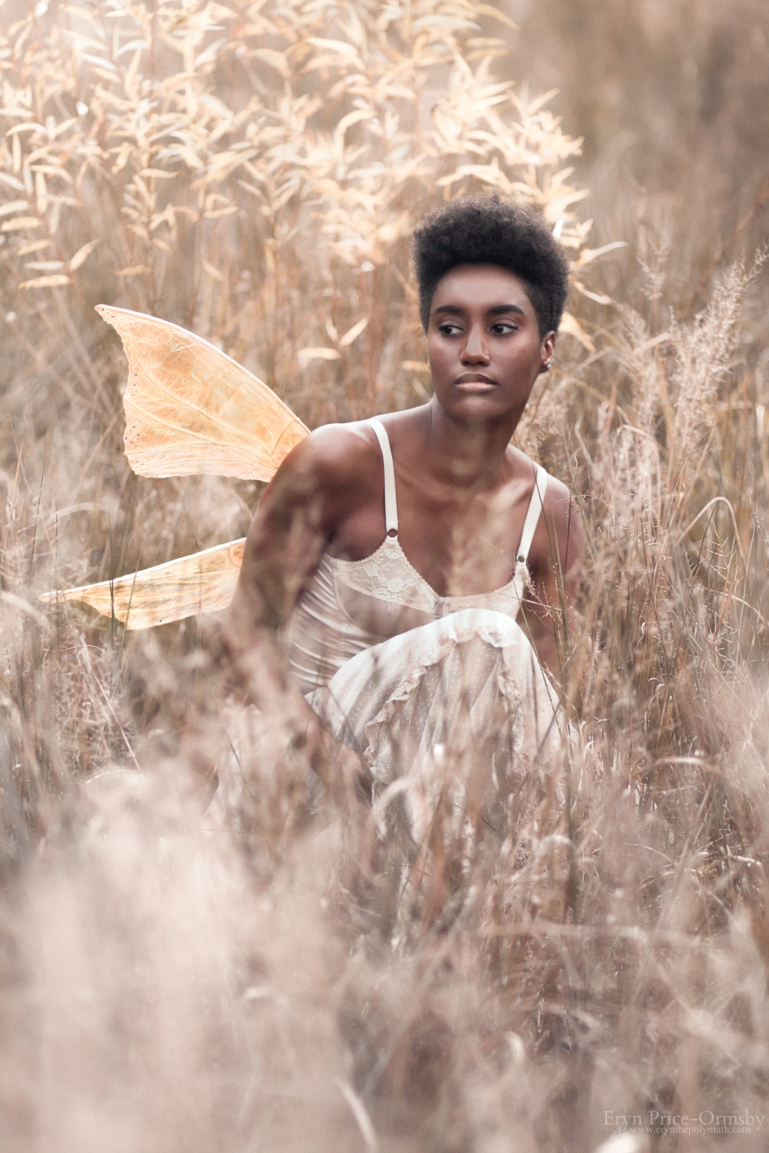 Veined Royal Wings | Medium | Gold | Custom Holes Model | Mikaila Ware Photography | Eryn Price-Ormsby