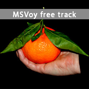 MSVoy-freetrack.jpg