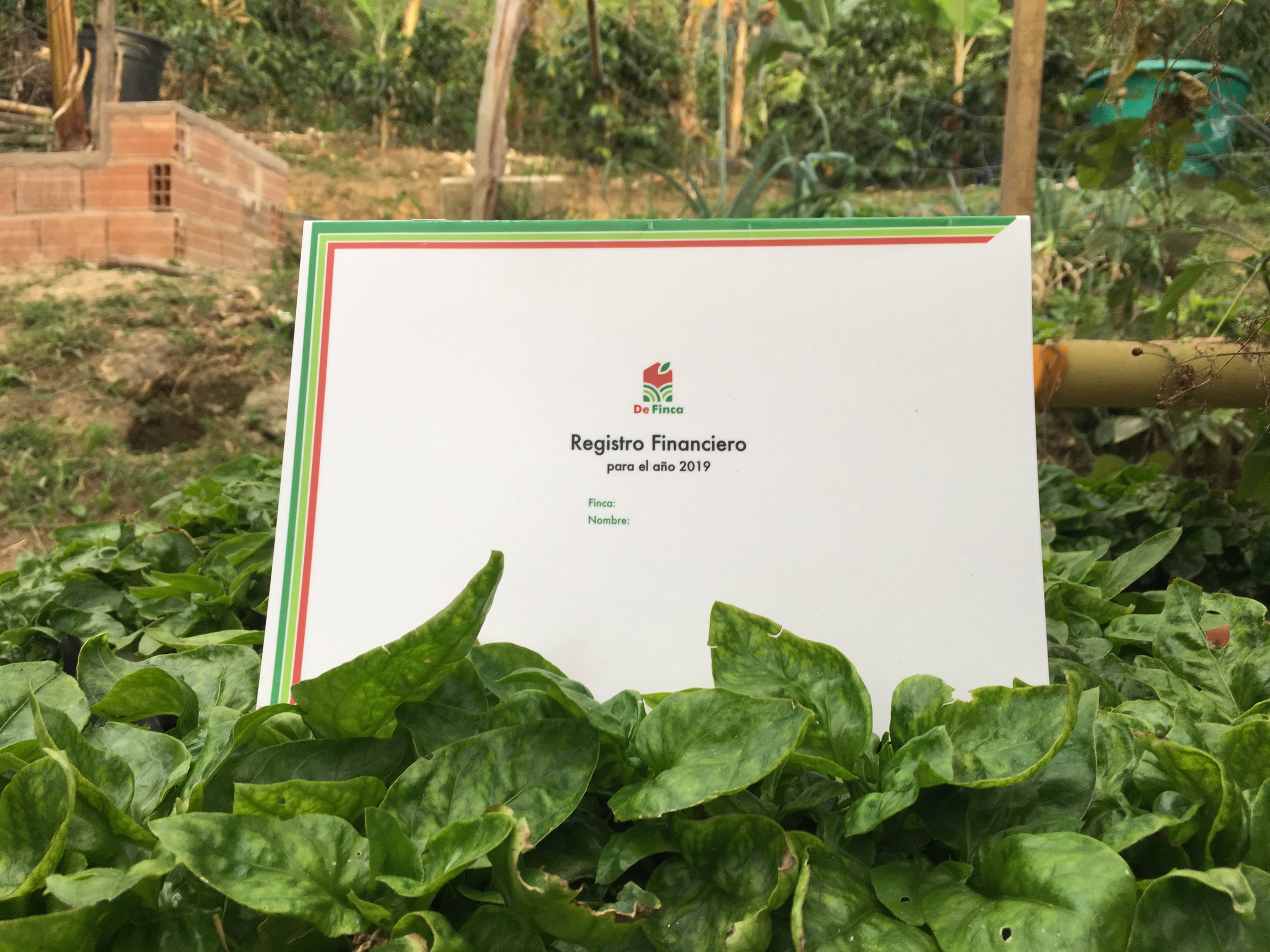 On top of the manual, we developed a financial ledger tailored for coffee growers.  Photo credit: Rubez Chong