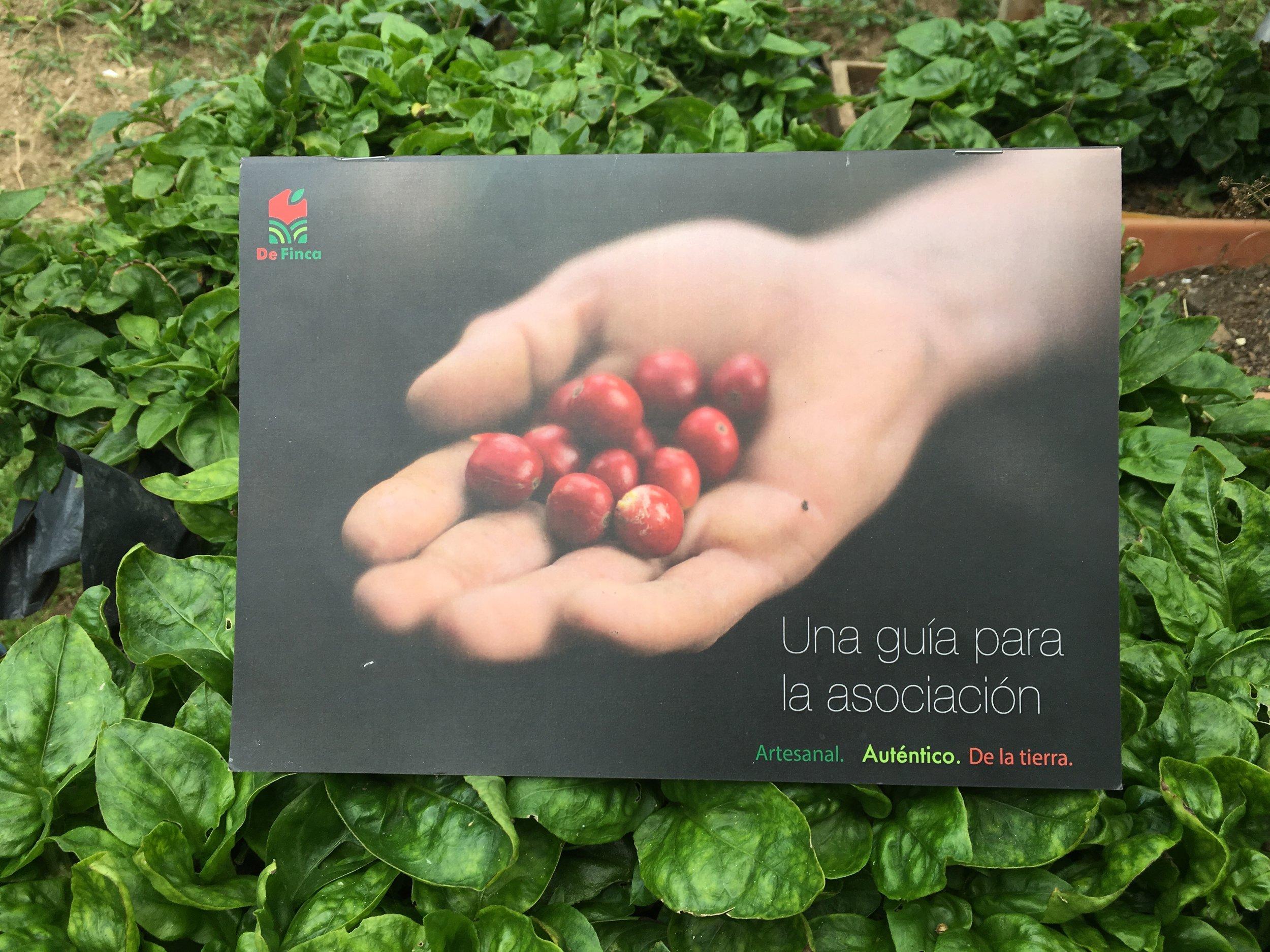 De Finca's association handbook.  Photo credit: Rubez Chong