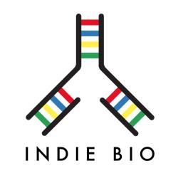 indie bio.jpg
