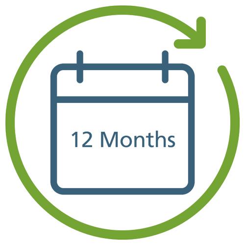 12 Months infographic.jpg